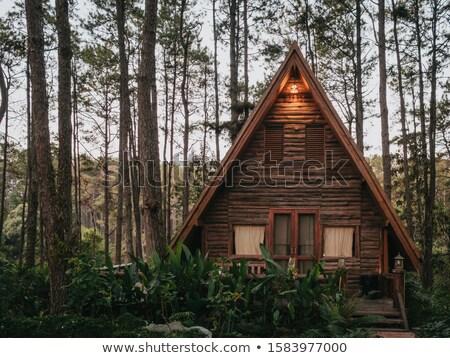 Wooden Hut Stock photo © naffarts