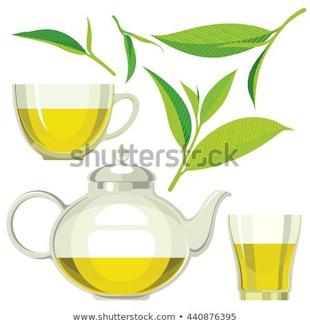Foto stock: Ilustración · tetera · taza · té · verde · vector · estilo