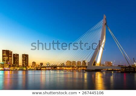 Erasmus Bridge By Night Stok fotoğraf © vichie81