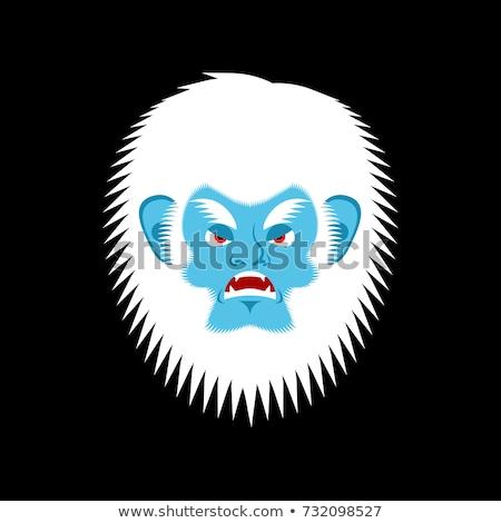 悪 感情 顔 怒っ 雪だるま 積極的な ストックフォト © popaukropa