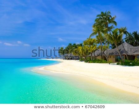 Plaj tatil kulübe bungalov tropical island yalıtılmış Stok fotoğraf © orensila