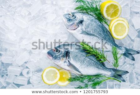 Ruw zee vis rosmarijn broccoli witte Stockfoto © Lana_M