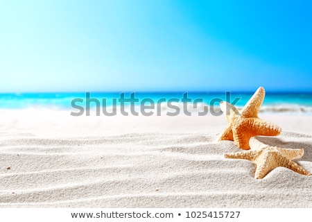 Sandy beach and sun in blue sky Stock photo © serg64