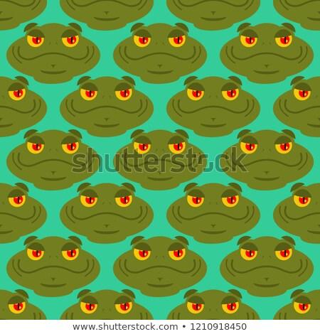Kikker amfibie ornament pad textuur Stockfoto © popaukropa