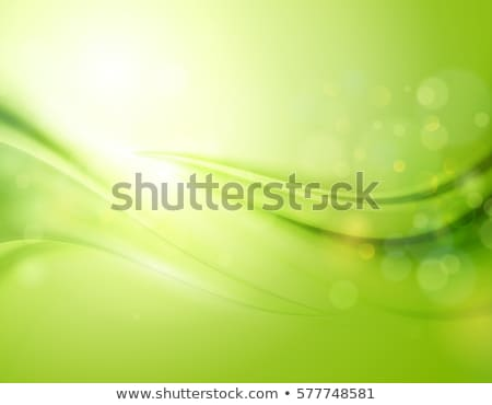 blurred green background with blue and green bokeh circles abstract natural layout stock photo © artjazz