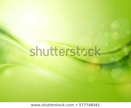Turva verde azul bokeh círculos abstrato Foto stock © artjazz