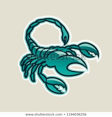 Verde escorpião ícone vetor ilustração Foto stock © cidepix