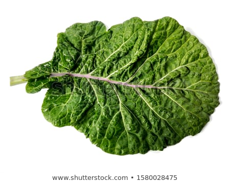 Curly leaf cabbage kale Tuscan Stock photo © maxsol7
