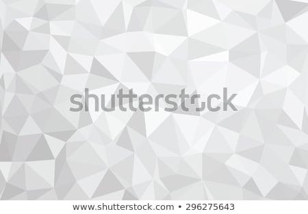 Vector Polygon Background Stock photo © leedsn