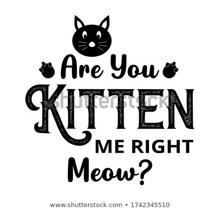 Modern Calligraphy Of Ink Meow Letters Vector Stock photo © pikepicture
