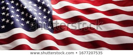 Bandiera Stati Uniti america 3D texture Foto d'archivio © andreasberheide