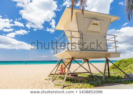 Strand badmeester huis Hawaii zomervakantie bestemming Stockfoto © Maridav