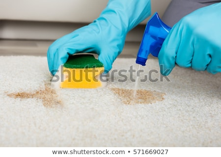 persoon · schoonmaken · tapijt · spons - stockfoto © andreypopov