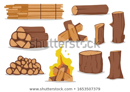 Fireplace with Flames and Burning Logs Icons Set Stock photo © robuart