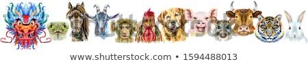 Border from watercolor twelve chinese zodiac animals Stock photo © Natalia_1947