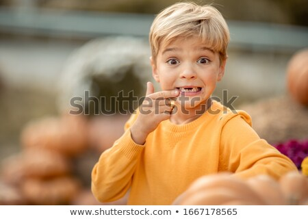 Junge gelb Pullover Kürbis Ernte Stock foto © ElenaBatkova