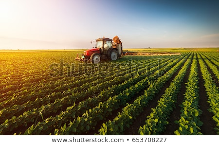 Tractor cultivating field with fertilizer in spring Stock photo © simazoran