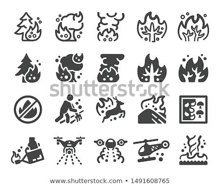 Wildfire ikona wektora ilustracja podpisania Zdjęcia stock © pikepicture