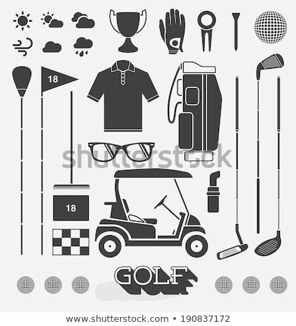 Trophäe Golfclubs Tasche Champion Vektor Illustration Stock foto © yupiramos