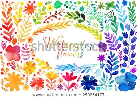 Conjunto aquarela muitos cores projeto pintar Foto stock © SArts