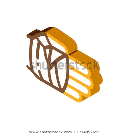 Fist in Protective Bandage isometric icon vector illustration Stock photo © pikepicture