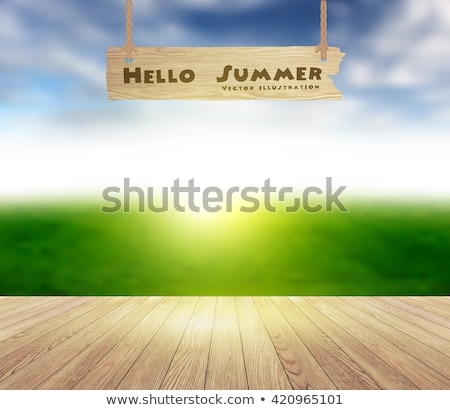 wood board, grass and sky. Background  stock photo © rufous
