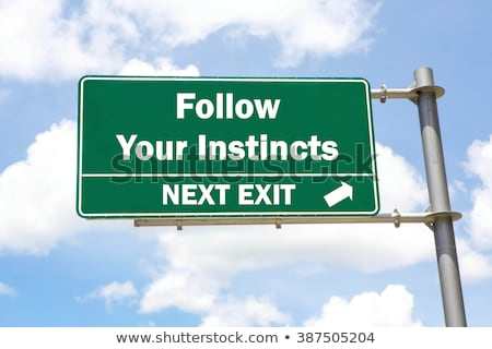 Green Road Sign - Follow Your Instincts Stock photo © kbuntu