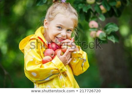 Kız altın elma gülen el Stok fotoğraf © ddvs71