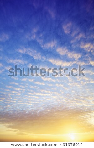 View of a spectacular sky at sunset time. Vertical shot. Stock photo © moses