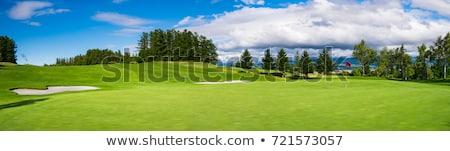 гольф · области · зеленая · трава · красный · флаг · небе - Сток-фото © photocreo