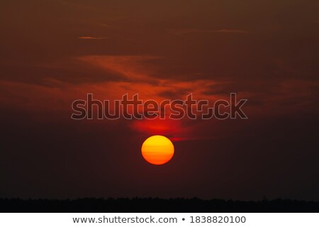 Ashdown Sunset Stock photo © suerob