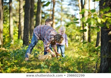 mãe · filha · cogumelos · família · floresta - foto stock © photography33