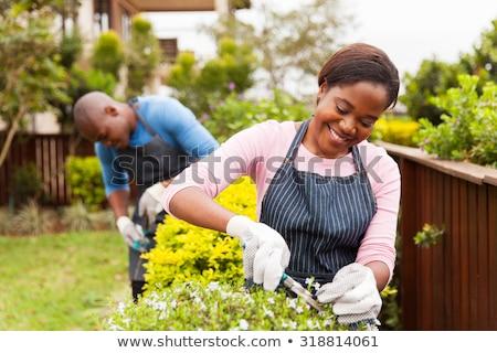 lovely african woman gardener stock photo © fouroaks