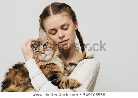 maine coon cats and woman stock photo © cynoclub