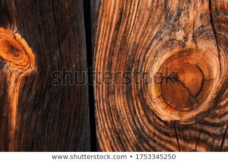 древесины пространстве текста изображение текстуры Сток-фото © ilolab