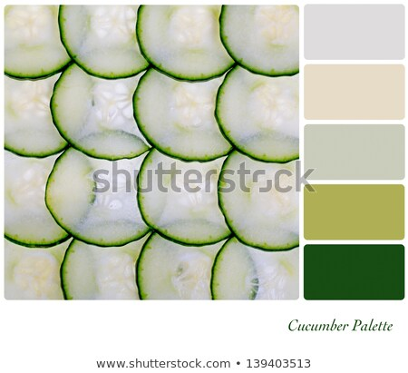 Green cucumbers colour palette swatch Stock photo © REDPIXEL
