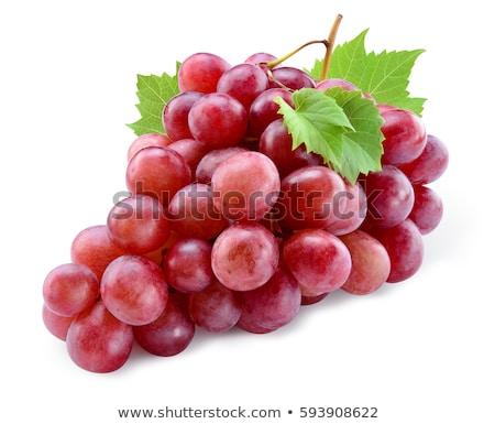 Ramo fresco vermelho uva isolado branco Foto stock © boroda