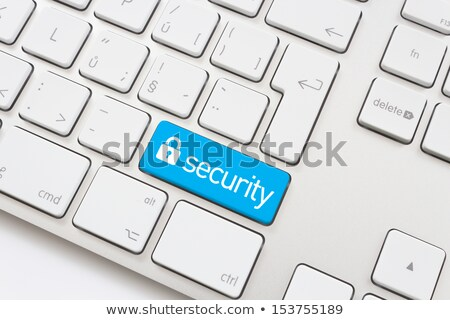 keyboard with security button stock photo © tashatuvango