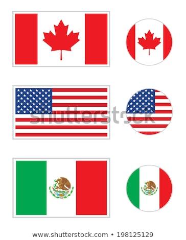 zászlók · vektor · szett · világ · 2011 · új - stock fotó © 5xinc