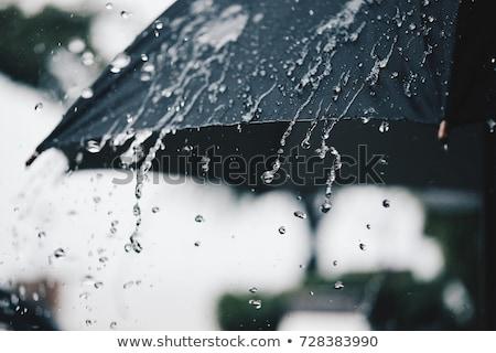 Kadın şemsiye ışık yağmur güzel oturma Stok fotoğraf © ssuaphoto