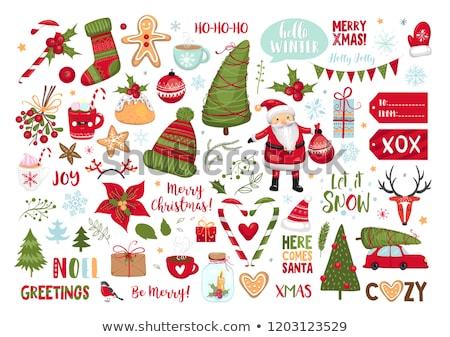 Christmas set Stock photo © WaD