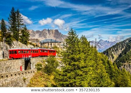 Mont Blanc massif and mer de glace Stock photo © Antonio-S