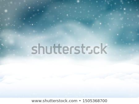 Fiatal aranyos nő lány boldog hó Stock fotó © Rob_Stark