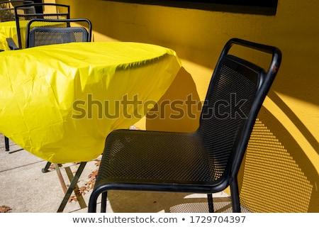Metaal huis zwembad gras hout Stockfoto © hanusst