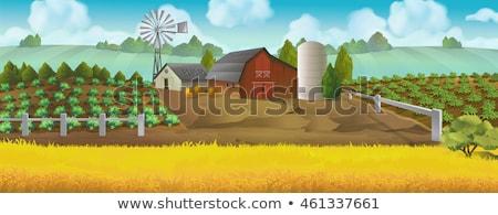 housing area in rural landscape with fields Stock photo © meinzahn
