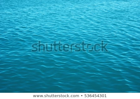 green water surface with small waves Stock photo © mycola