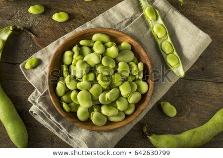 Fava bean. Stock photo © chatchai