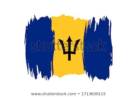 Barbados vlag icon geïsoleerd witte business Stockfoto © zeffss