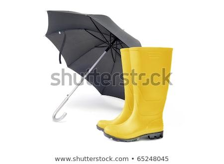 Umbrella & wellingtons stock photo © andromeda