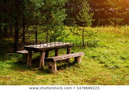 bank · orman · yedi · park · su · ağaç - stok fotoğraf © emirkoo